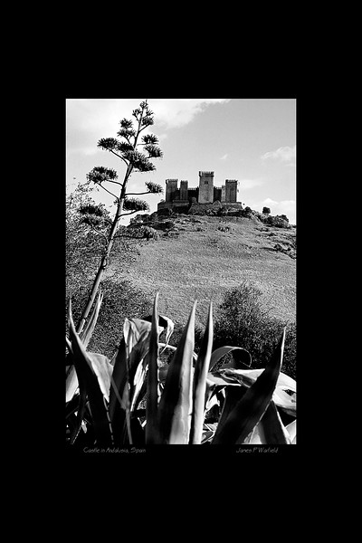 143_Castle in Andalusia, Spain copy.jpg