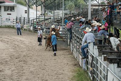 Rodeo Okeechobee