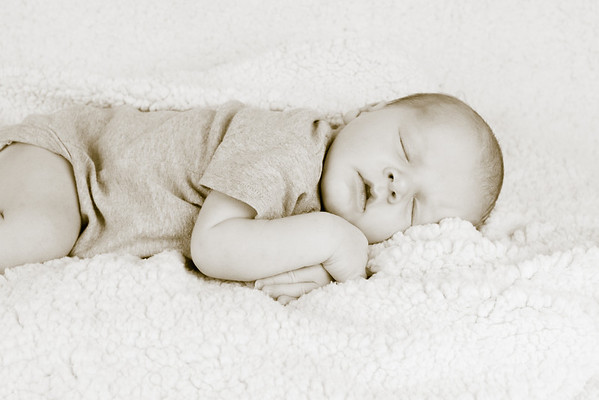 Newborn Pictures from Twisted Branch Photography