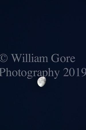 Bill Gore
