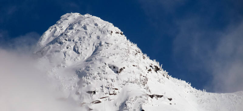 Snow covered peak with some trees