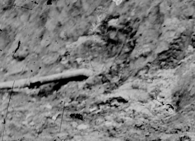 Petersburg trench bodies