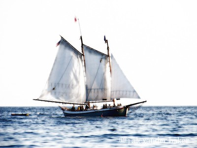 Maine Schooner, with a touch of color