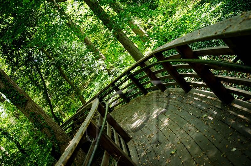 Forest_Hill_WM-1630.jpg