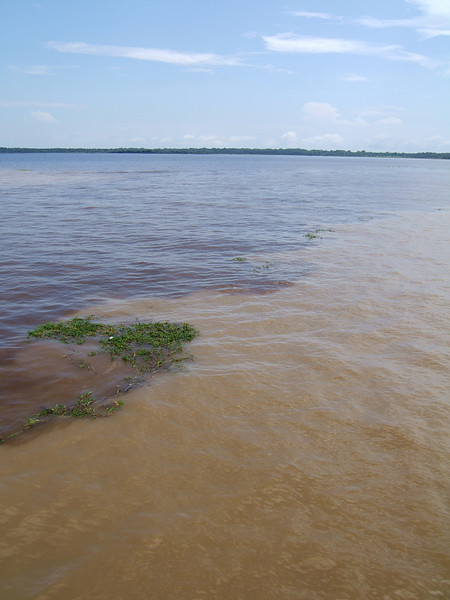 Day 2 - Manaus - The meeting of the waters: the Rio Negro and the Rio Solimoes (aka Amazon River).