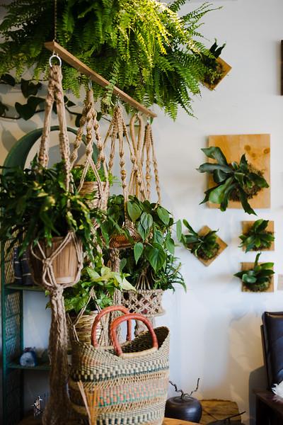Botanica home & garden