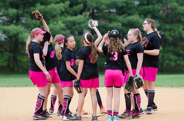 Pink Panthers Softball