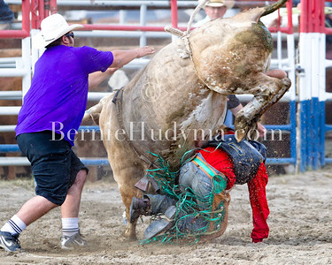 Bull Riding - Barriere 12
