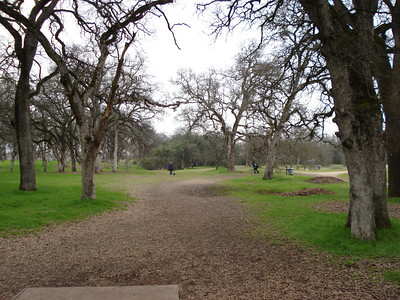 Disc Golf - Rocklin 01-11-2011