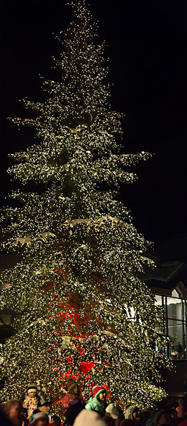 Beaver Creek Christmas tree.jpg