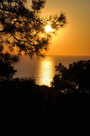 San Diego  / Torrey Pines - December 2011