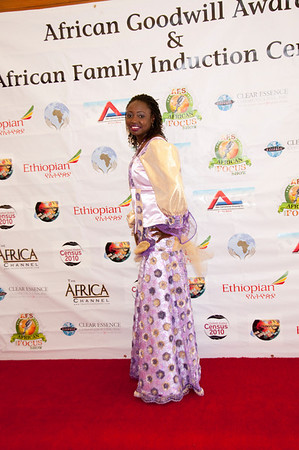 2010 AFRICAN GOODWILL AWARDS
