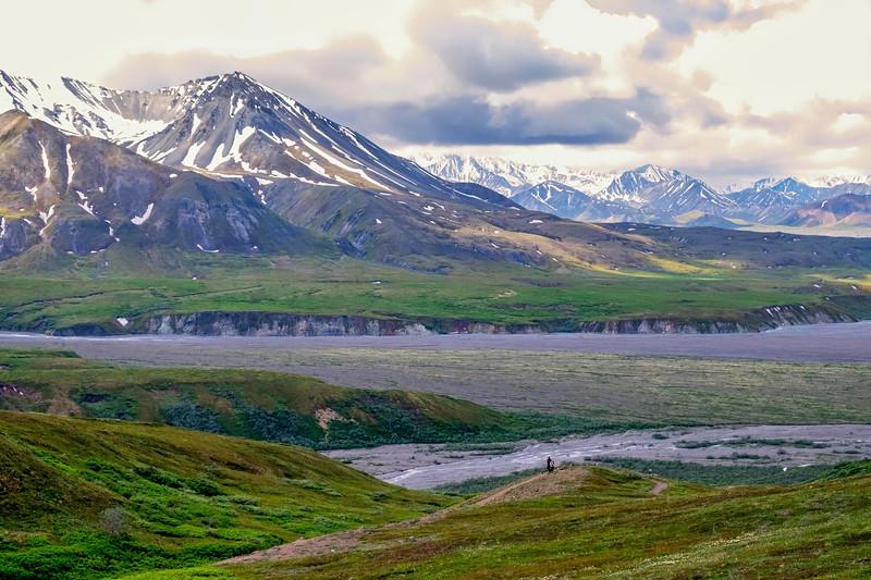Highway Pass Panorama,  Denali National Park