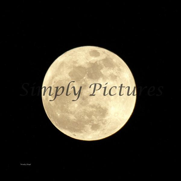 Moon023