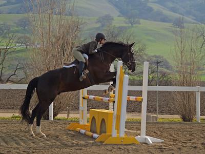 Woodmyst Hunter/Jumper March 2007