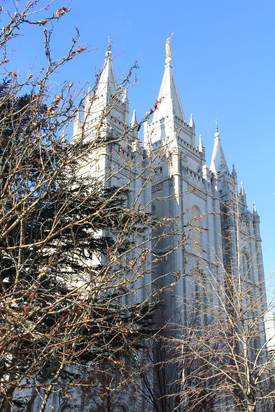 20161124-23 SLC LDS Temple.JPG