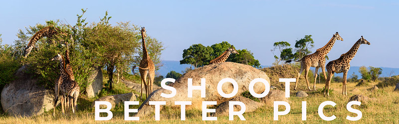 Shoot better Photographs Now - 25 Quick and Dirty Tips