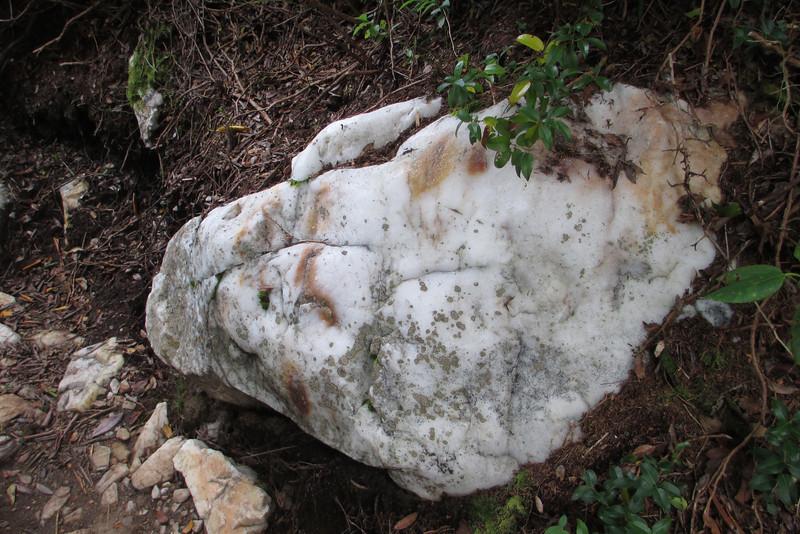 Old Butt Knob Trail -- 5,950'