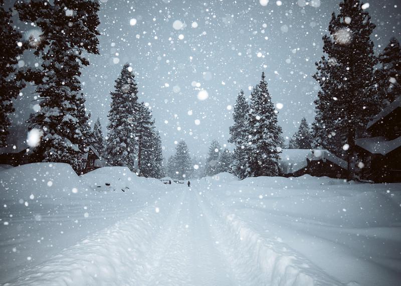 Darn Tough FW2021 Snow