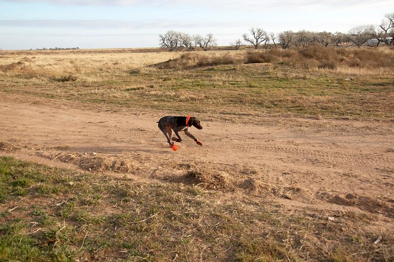 2008 KS Hunting Trip 1 - DSC_0249.jpg