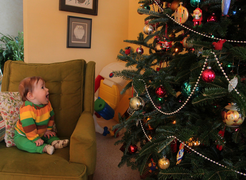 Luca loved looking at all the lights on the tree.