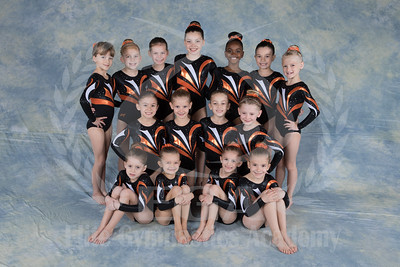 Team 2016 - Girls JO Level 3