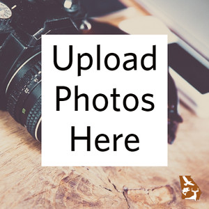 UPLOAD PHOTOS HERE