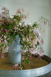 Fringe Flower Co