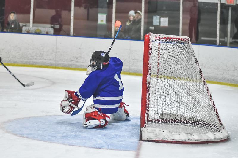 Leafs-122.jpg