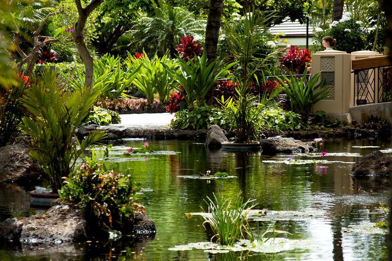 Journey into Oahu Photograph 9
