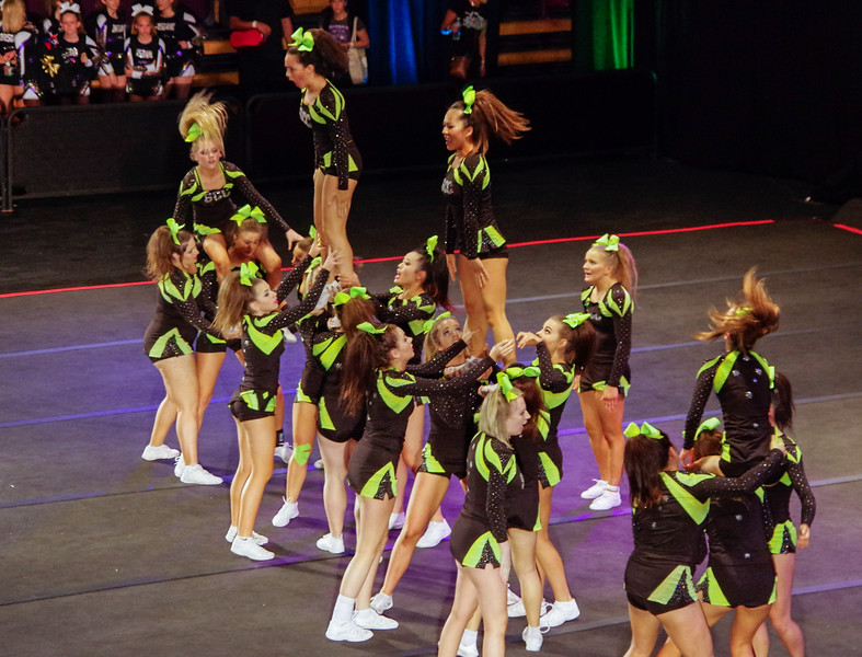 20151017-Cheer_Majors_2015-0024- Copyright David Brewster 2014 All rights reserved.jpg