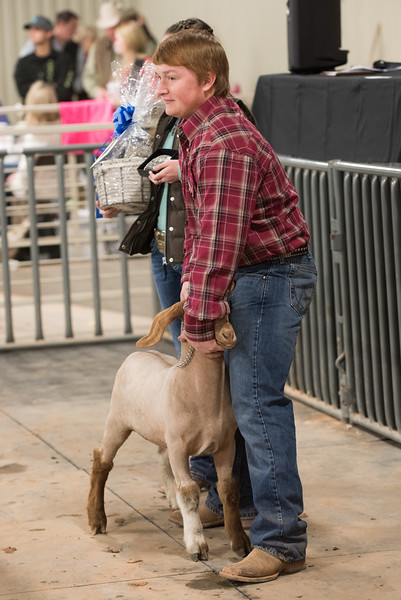 Hays County Show-0468.jpg