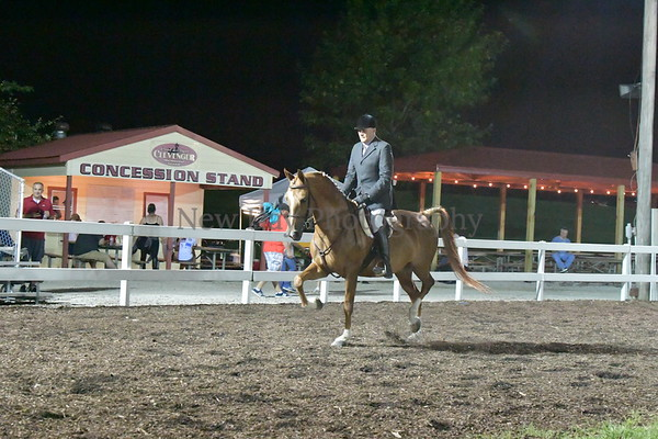 58. PB HA-AA Arabian Hunter Pl Open