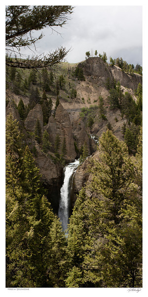 Hike in Yellowstone National Park