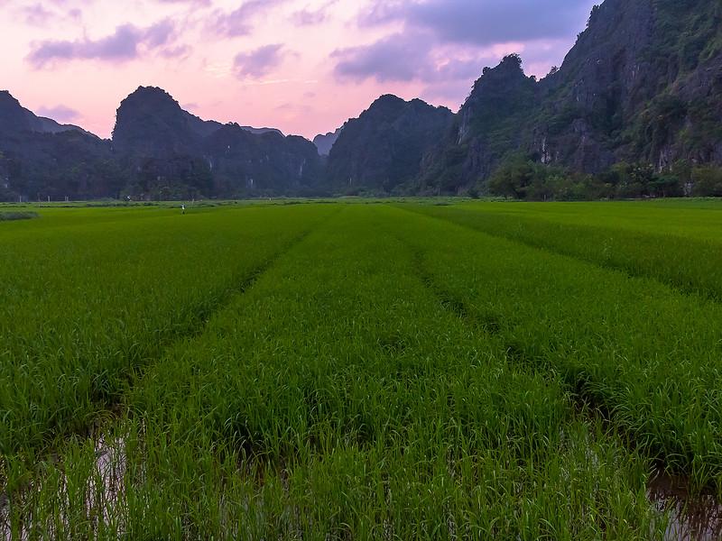 Vietnam Ninh Binh_P1090164.jpg