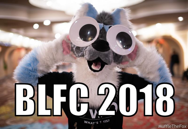 BLFC2018_Cover.jpg