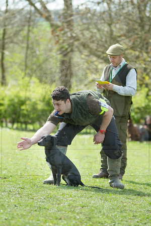 KIRKBOURNE SPANIELS SPRING WORKING TEST, APRIL 2016