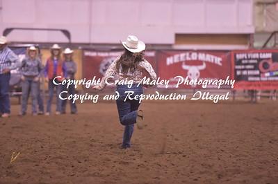 RIBBON ROPING 9-16-2017