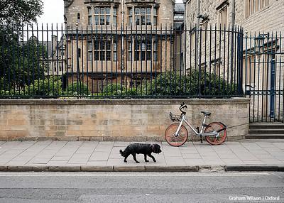 OAL Street Oxford - Jun 19