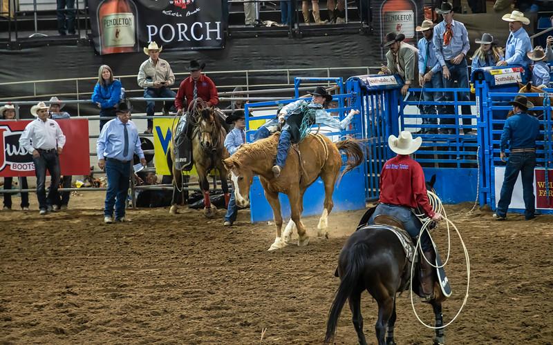 Scottsdale Parada del Sol Rodeo   March 08, 2020  09_.jpg