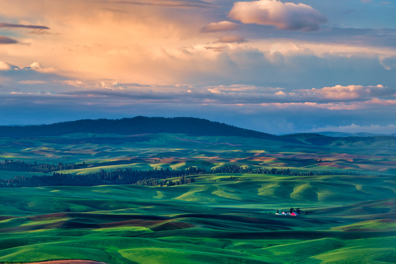 First Light on Palouse