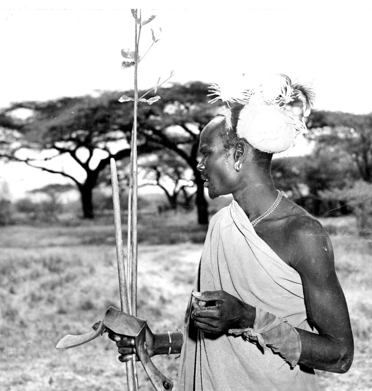 . MAR 14 1950  This native Turkana tracker, carrying his spear, fly swatter and head rest, is the usual type employed for rhino hunting in Kenya colony\'s Northern Frontier province. The Turkanas are tireless trackers and uncanny in following old and faint tracks over rough terrain.  Credit: Denver Post