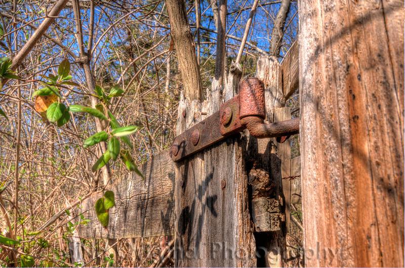Old Wood Fence Greensfelder Park Series 4 hdr (first 6).jpg