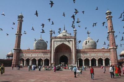 Rajasthan 10 10