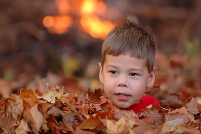 2007-11-18 Leaves