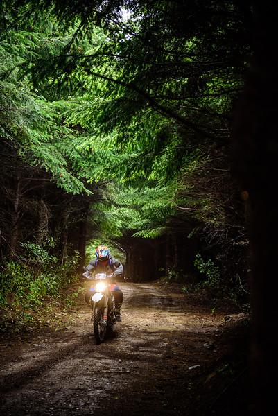 2019 KTM New Zealand Adventure Rallye (299).jpg