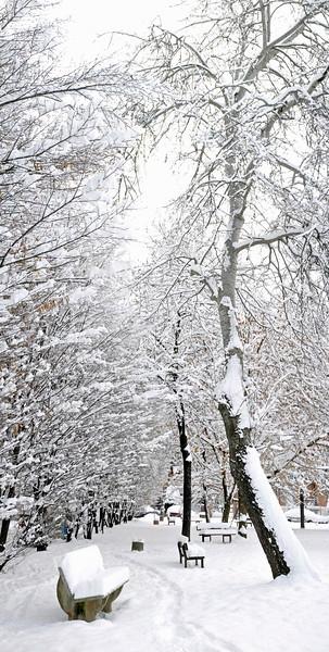 Snow - Via Pisacane Playground, Reggio Emilia, Italy - December 19, 2009