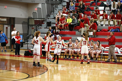 Girls JV Basketball - 1/11/2018 Newaygo