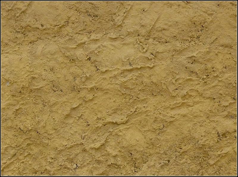 07-08-Pistoia-zoo-252.jpg