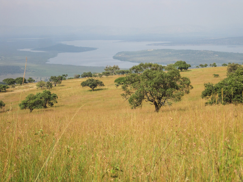 Looking across to Tanzania